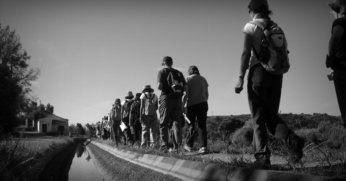Caminhada pelo Rio Arade com Guia Turístico