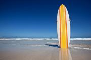 Surf em qualquer praia do Algarve sem preocupações