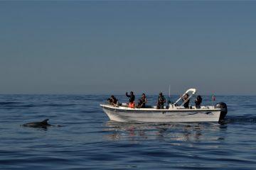passeio de barco com as várias experiências na Ria Formosa